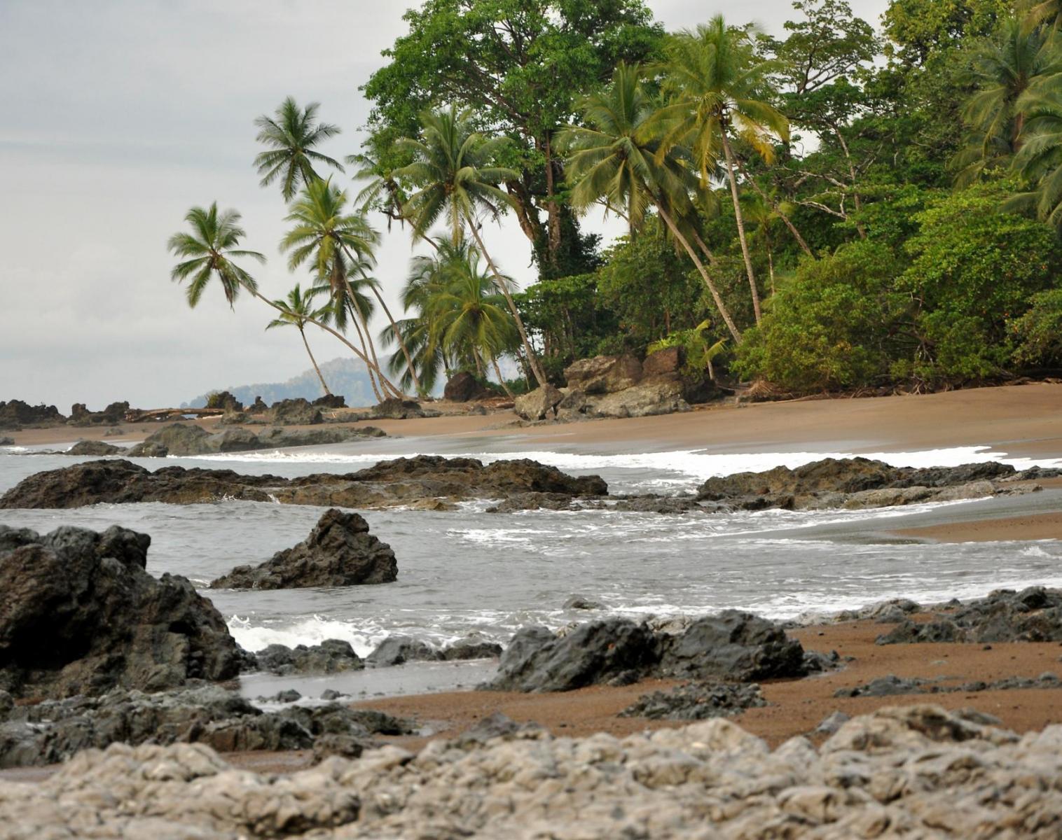 Costa Rica  DES MONTAGNES DU QUETZAL AU CORCOVADO   Découverte & Balade Trek & Randonnée