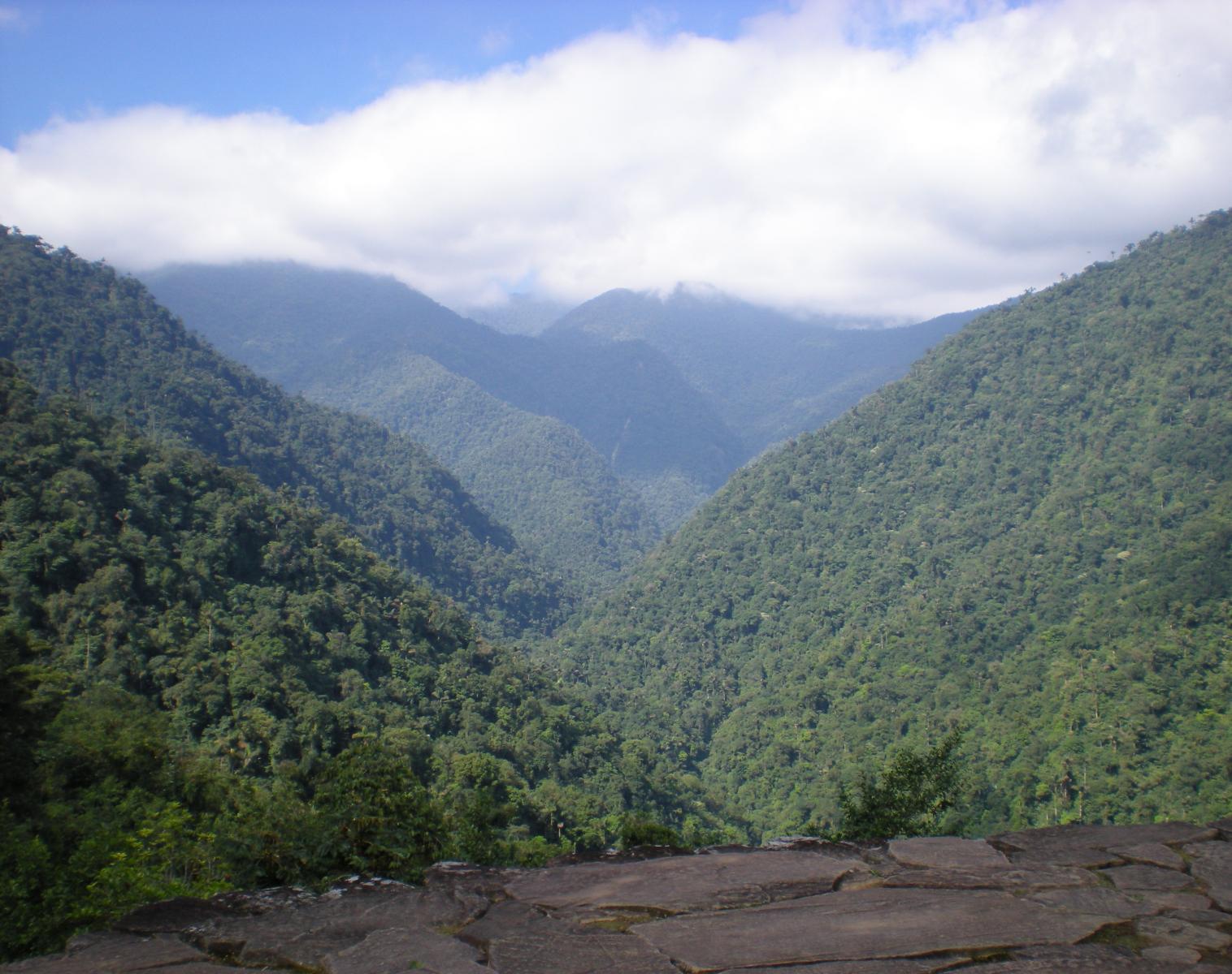 Colombie  Tayrona et la cité perdue   Découverte & Balade Trek & Randonnée