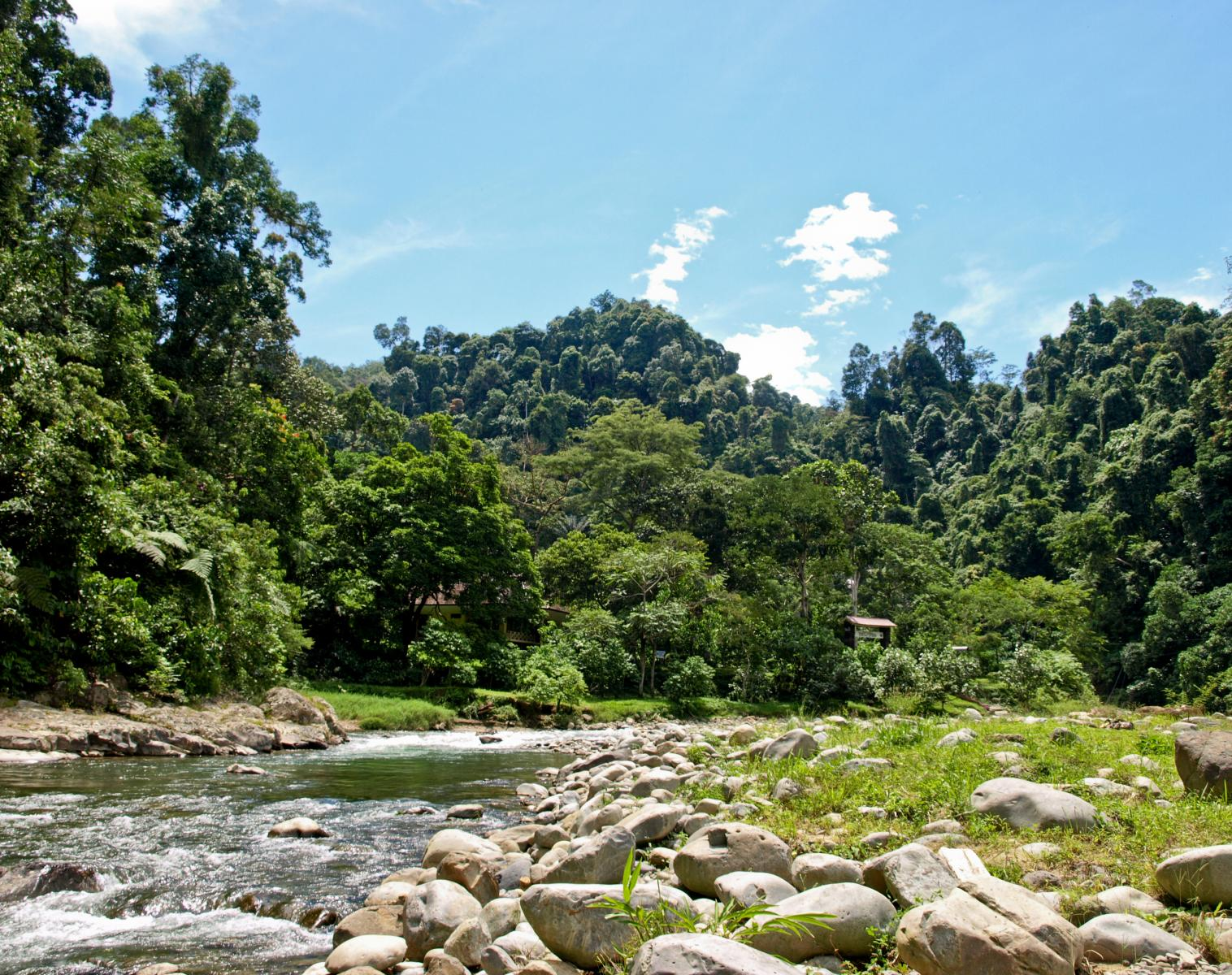 Indonésie  LA TRANSSUMATRA   Trek & Randonnée Observation nature