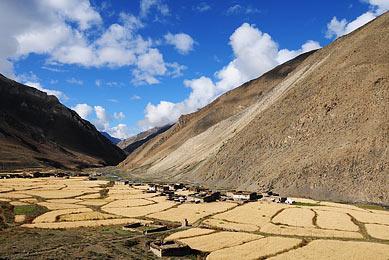 Trek au Dolpo Népal