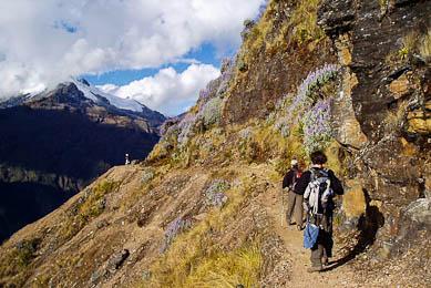 Trek Choquequirao Machu Picchu