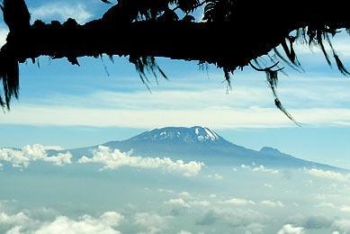 Safari et Randonné Kilimandjaro